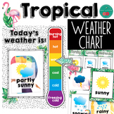 Tropical Weather Chart