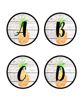 Tropical Word Wall ~ Dolch & Fry Sight Words