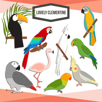 Tropical birds clip art - parrot clip art and digital stamps