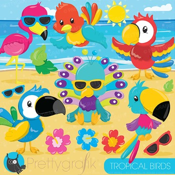 Tropical birds clipart commercial use, graphics, digital c