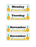 Tropical themed set of the months,days and sticker chart