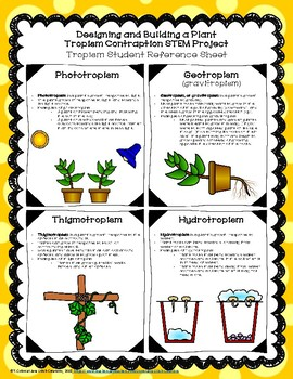 Designing and Building a Plant Tropism Contraption STEM Project--Life Science