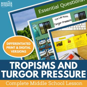 Tropisms and Turgor Pressure Complete 5E Lesson