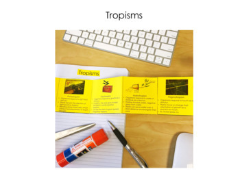 Tropisms and Turgor Pressure - Supplemental Lesson - No Lab