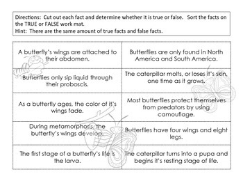 True / False Sort - Butterflies / Life Cycle of a Butterfly