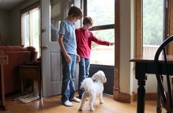 True Stories of Inclusion: Helping at Home RL.1.1, RL.1.9, W.K.3, SL.K.4, SLK.5