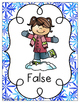 True or False Equation Snowflakes Sort {Freebie!}