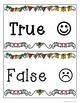 True or False FREEBIE