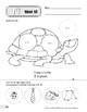 Tt: Turtle, Tent