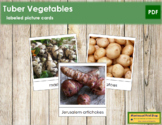Tuber Vegetable Picture Cards