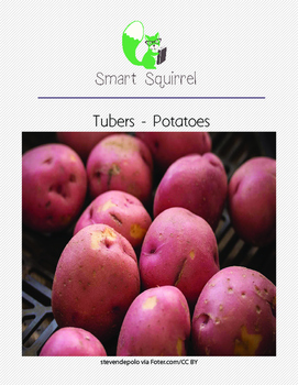 Tubers - Potatoes