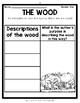 Tuck Everlasting Novel Study Guide-Activities/Assessments/Lessons/Materials