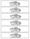 Tuck Everlasting - Spring Water Bottle Labels