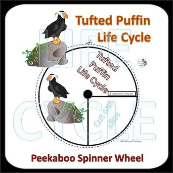Tufted Puffin (Life Cycle Spinner)