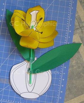 Tulip Craft Template PDF