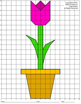 Tulip Mystery Picture