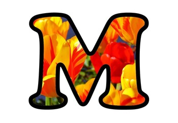 Tulips Bulletin Board Letters, Numbers, Symbols, Spring, Flowers Classroom Decor