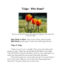 Tulips: Who Knew? Open Syllables Hi-Lo Passage for Older Readers