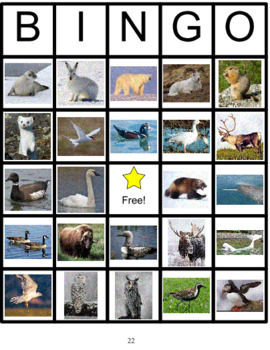Tundra Animals Bingo
