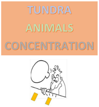 Tundra Animals Concentration