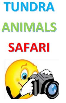 Tundra Animals Safari
