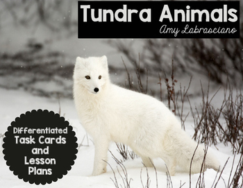 Free Tundra Animals Task Cards