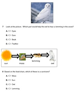 Tundra Assessment
