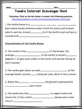 Scavenger Hunt List >> Tundra Biome Internet Scavenger Hunt WebQuest Activity | TpT