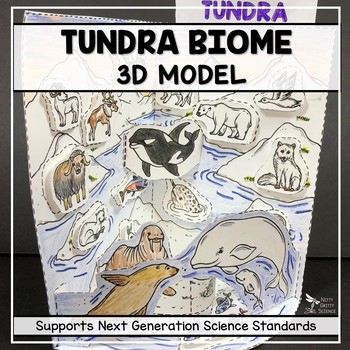 Tundra Biome Model  - 3D