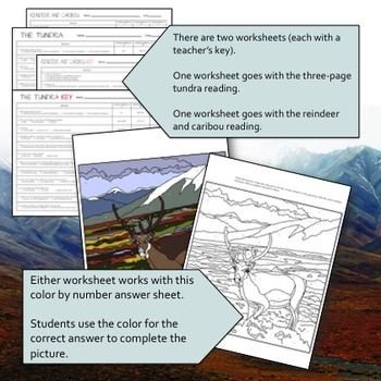 Tundra Biome Reading, Mapping and Color-by-Number