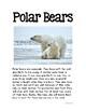 Tundra: Polar Bear