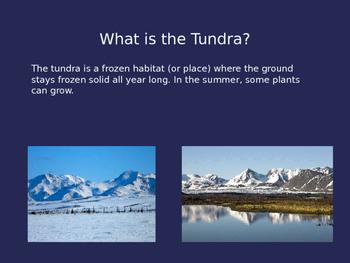 Tundra PowerPoint