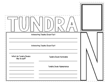 Tundra Swan Webquest Layered Book
