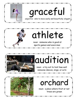 Turk and Runt Vocabulary Cards