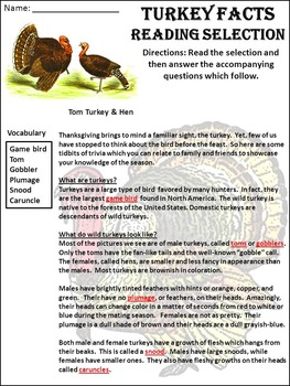 Turkey Activities: Turkey Facts Thanksgiving Science Activity Packet