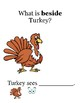 Turkey Adventure-spatial concepts, answering questions, 3 word phrases, vocab