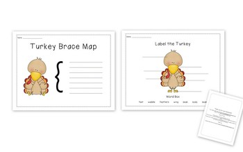 Turkey Brace Map and Labeling