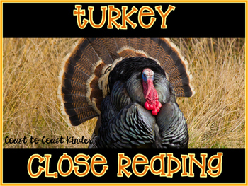 Close Reading ~ Turkey ~ Nonfiction