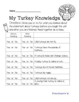 Turkey Close Reading