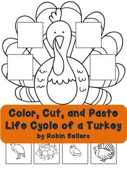 Turkey Life Cycle Activity