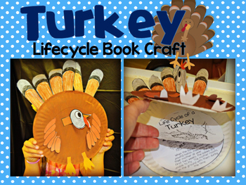 Turkey Lifecycle Craft