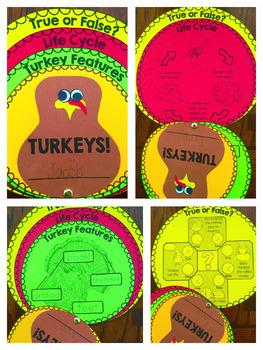 Turkey Craft Activity Book