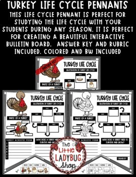 Turkey Cycle Activity Bulletin Board Teach- Go Pennants™