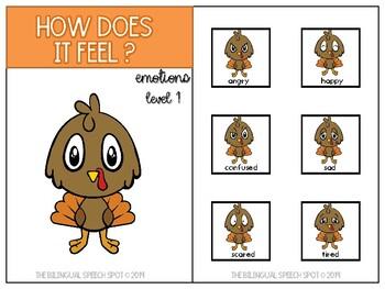 Turkey Emotions: Interactive Books (English)