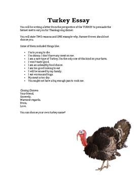 Turkey Essay