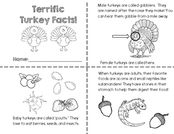 Turkey Fact Book