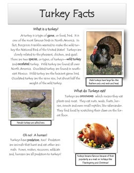 Turkey Facts and Comprehension
