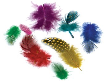 Turkey Feathers Combinations