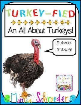 All About Turkeys!