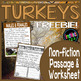 Turkeys Freebie {Non-fiction text, Main Ideas Worksheet, Writing, & Poster}